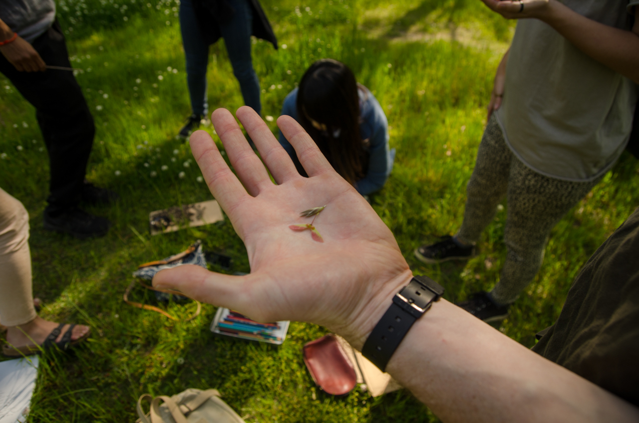 """A workshop participant shows their seed at """"The Seed Inside Us"""" workshop (2018, The Branch / SocieCity)"""